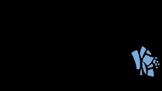logo-mira-blau-rose2